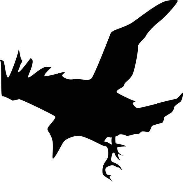 1024px-Capi_x_Raven.svg