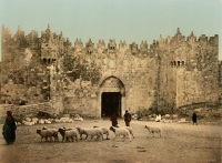 Jerusalem_Damaskustor_um_1900
