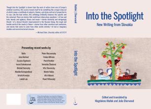 Into the Spotlight - cover - final copy